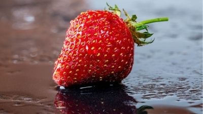 http://mjeetkaur.com/how-strawberry-can-be-saved-from-many-diseases/